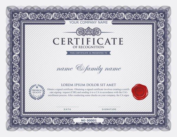 сертификат печать киев